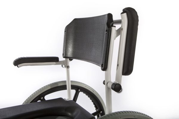 neįgaliojo-vezimelis